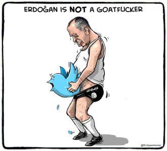 كاريكاتير أردوغان الجنسي