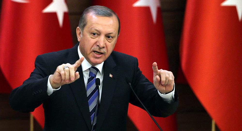 النمسا: لا نرحب بالحملة الانتخابية (لأردوغان) في بلادنا